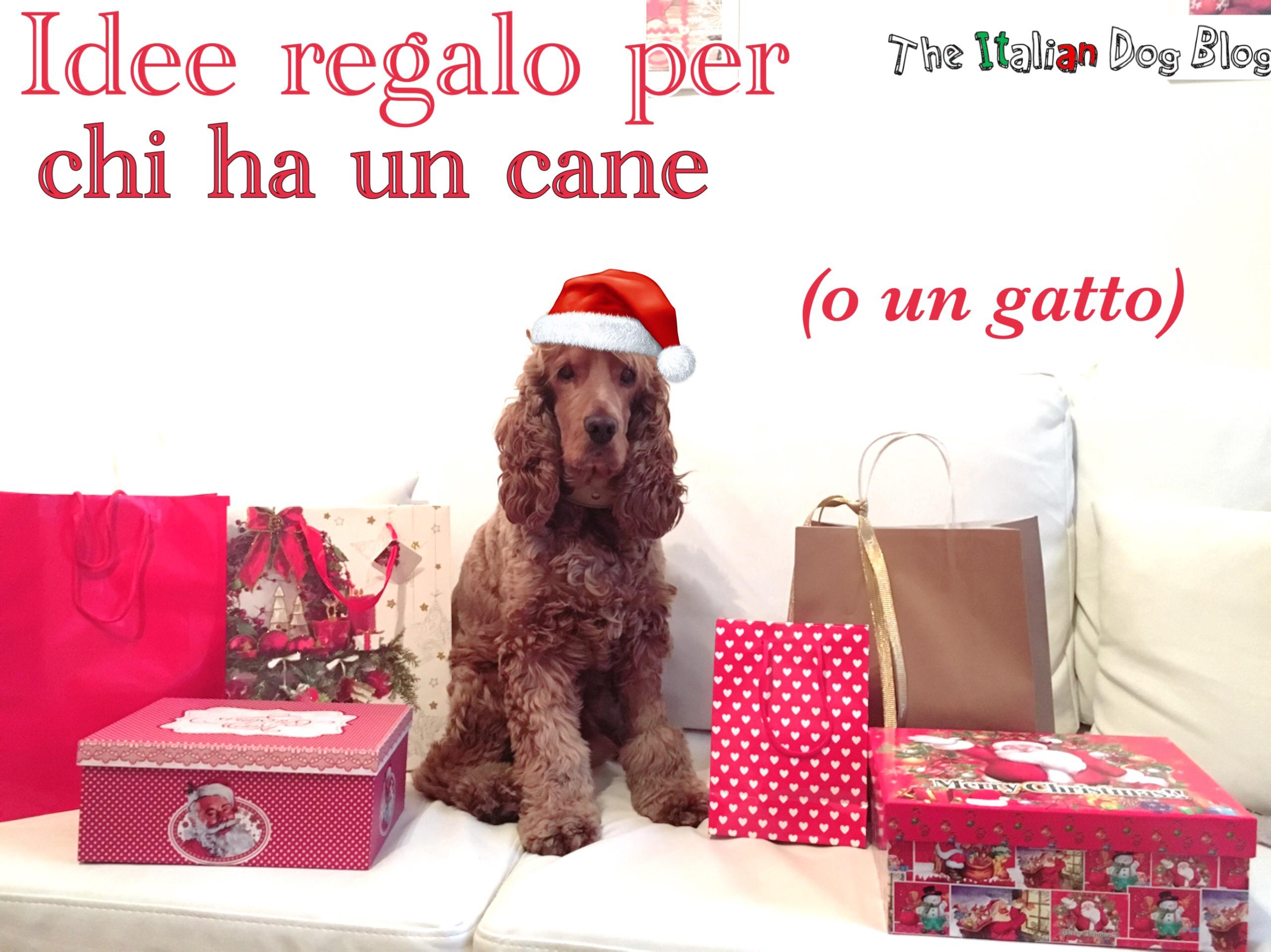 Idee regalo per chi ha un cane for Regalo a chi