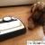 Robot Folletto VR200 – recensione di The Italian Dog Blog