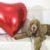 Dog influencer: come scattare le foto al cane