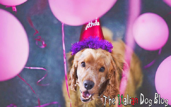 Buon Compleanno A Te