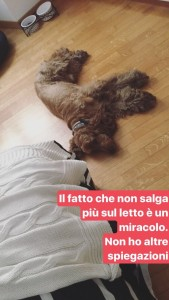 Dalle nostre Instagram Stories (non perdertele!!)