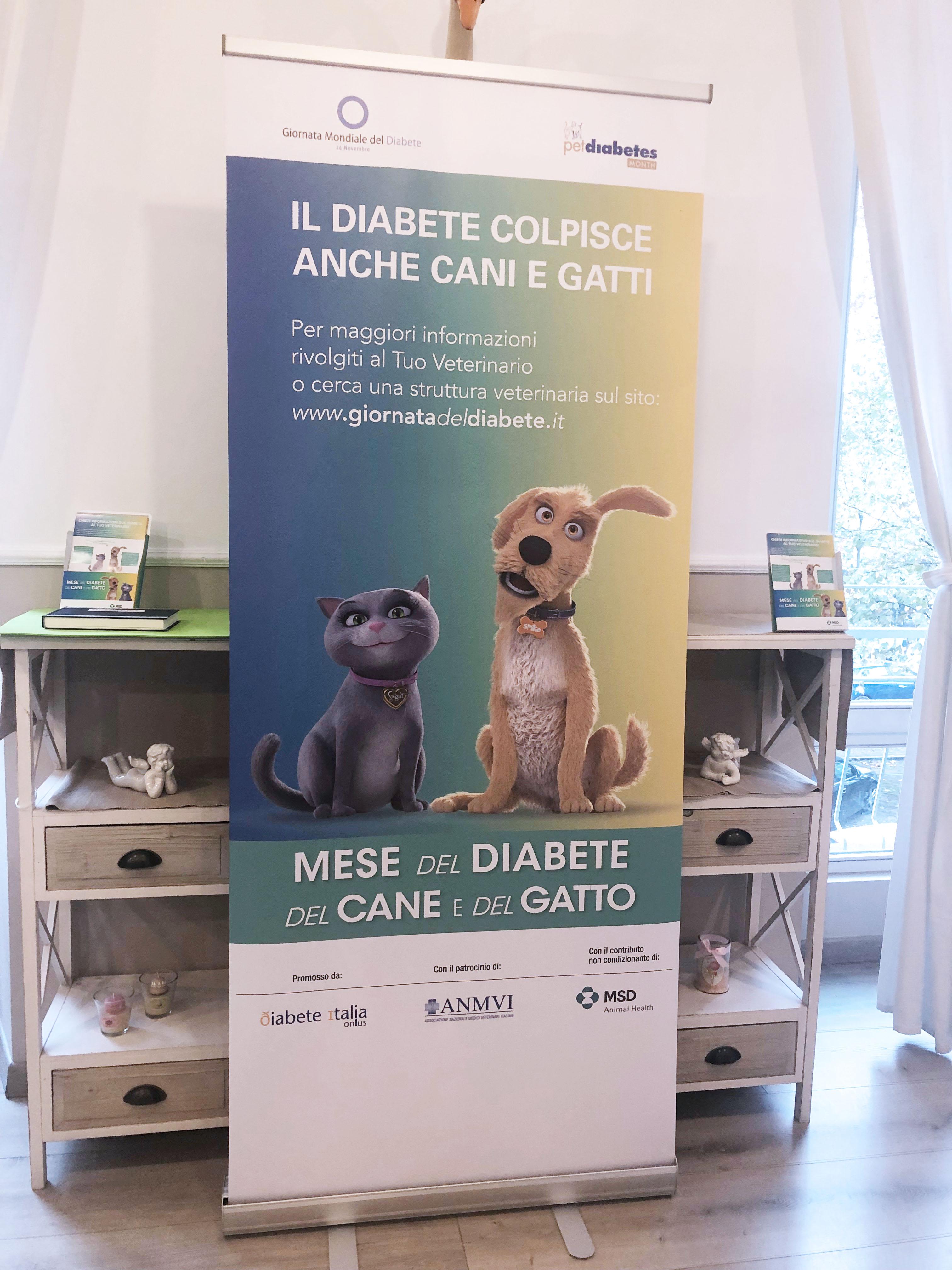 E Se Il Tuo Cane O Il Tuo Gatto Avesse Il Diabete Sintomi E