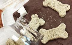 biscotti-al-cocco-per-cani