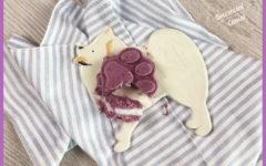 gelato-alla-frutta-per-cani