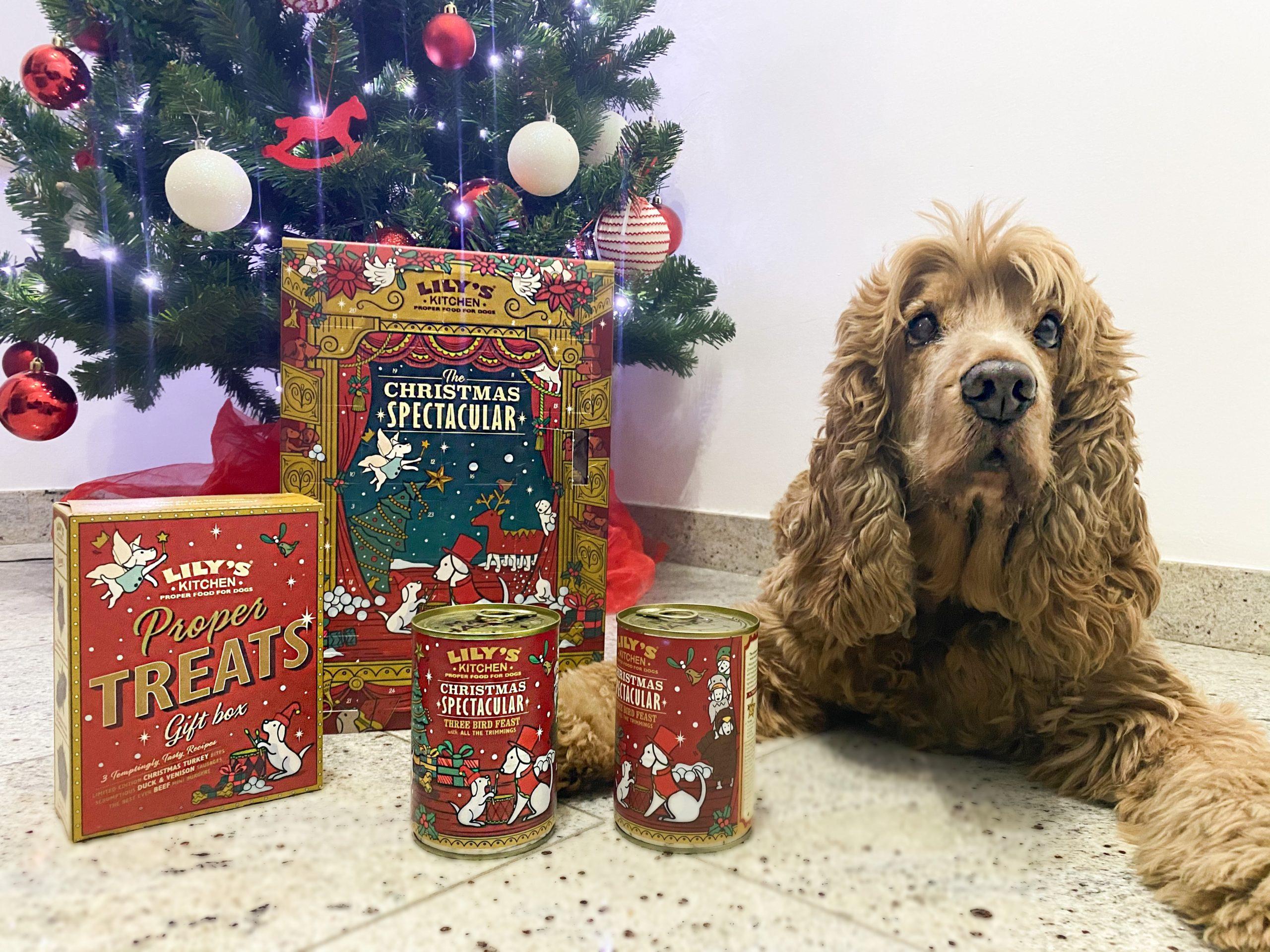 Natale Super con Lily's Kitchen